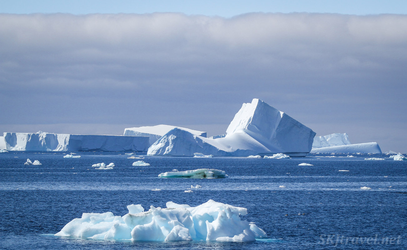 Large and small icebergs floating in the ocean near the Antarctic Peninsula.