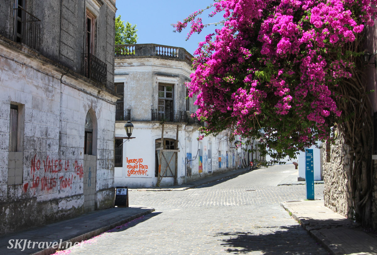 Graffiti and street art on abandoned buildings in Colonia del Sacramento, Uruguay.