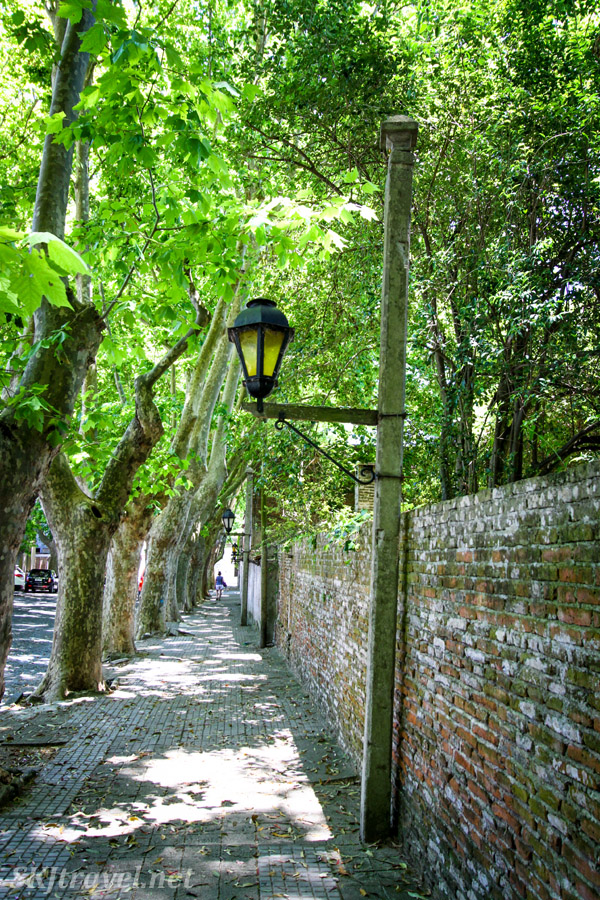 Tree-lined cobblestone streets of Colonia del Sacramento, Uruguay. Lamp post.