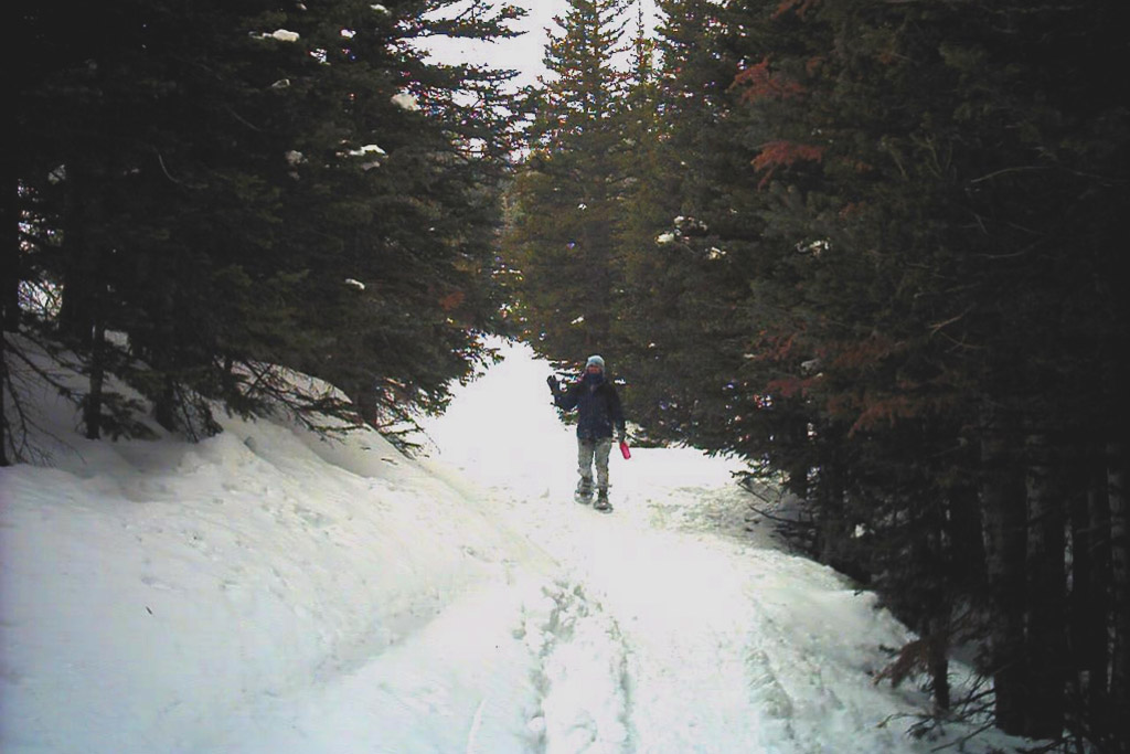 Snowshoeing near the Caribou Townsite above Nederland, Colorado.