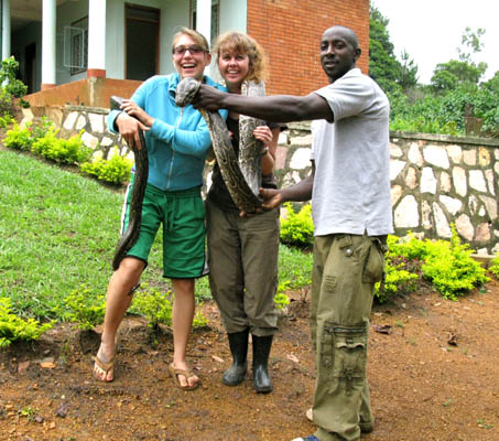 Draped over my shoulder, a giant python snake in ill health, found inside a small box, brought to the UWEC. Uganda.