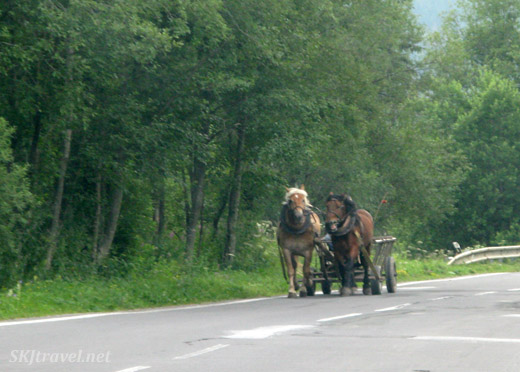 Horses pulling a cart along the roadside near Gypsy villages in Slovakia.