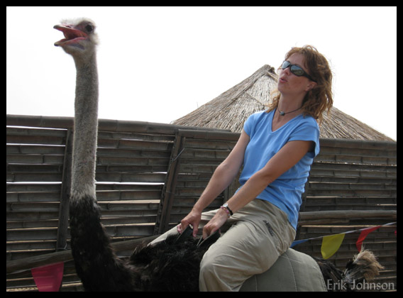 girl riding an ostrich