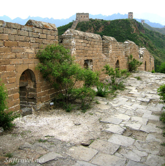 The bushes are starting to take over the Great Wall. China.