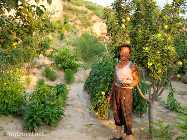 A typical courtyard full of vegetables and fruits growing in summer, Dang Jia Shan village, Shaanxi Province, China.