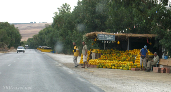 Fruit stand on the side of the road, Tunisia.
