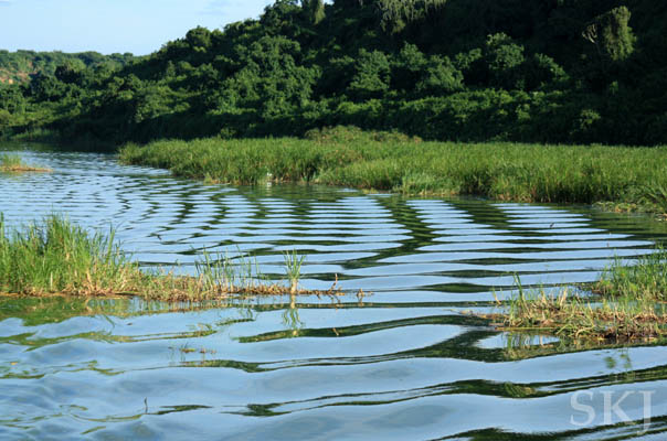 Ripples in the water of the Kazinga Channel, Queen Elizabeth National Park, Uganda.