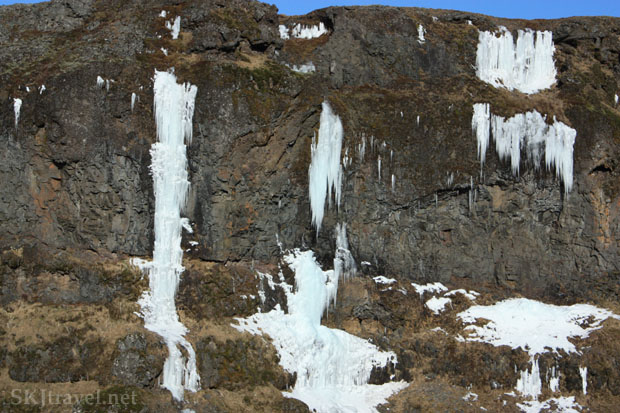 Water oozing from multiple spots along a cliff and freezing into mini icefalls, Glymur Falls trail, Iceland. Photo by Shara Johnson