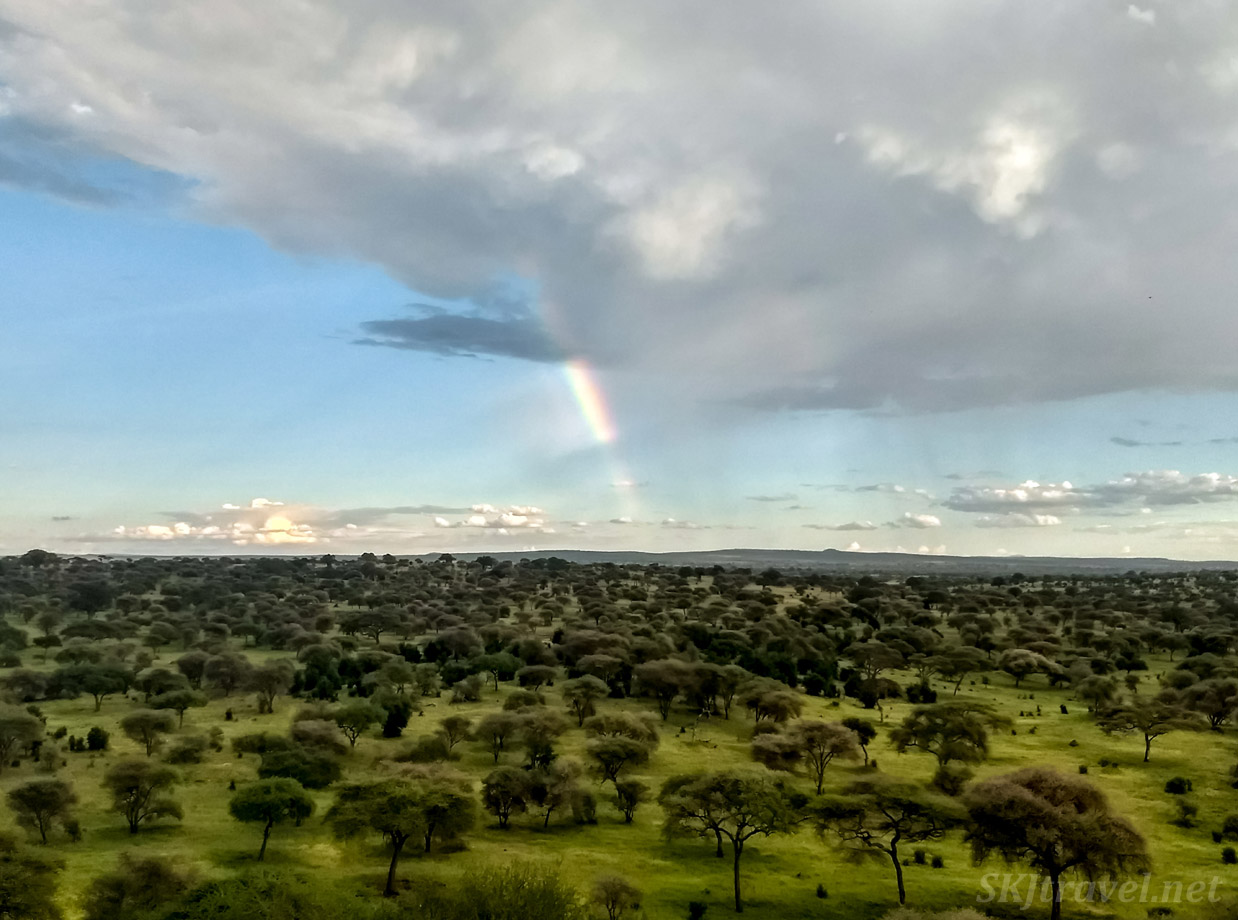 Looking out over the plains from the balcony at Tarangire Lodge, Tanzania.