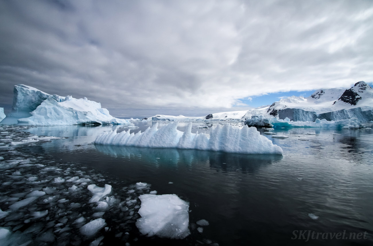 Icebergs reflected in the black ocean water of the Southern Ocean. Cierva Cove, Antarctica.