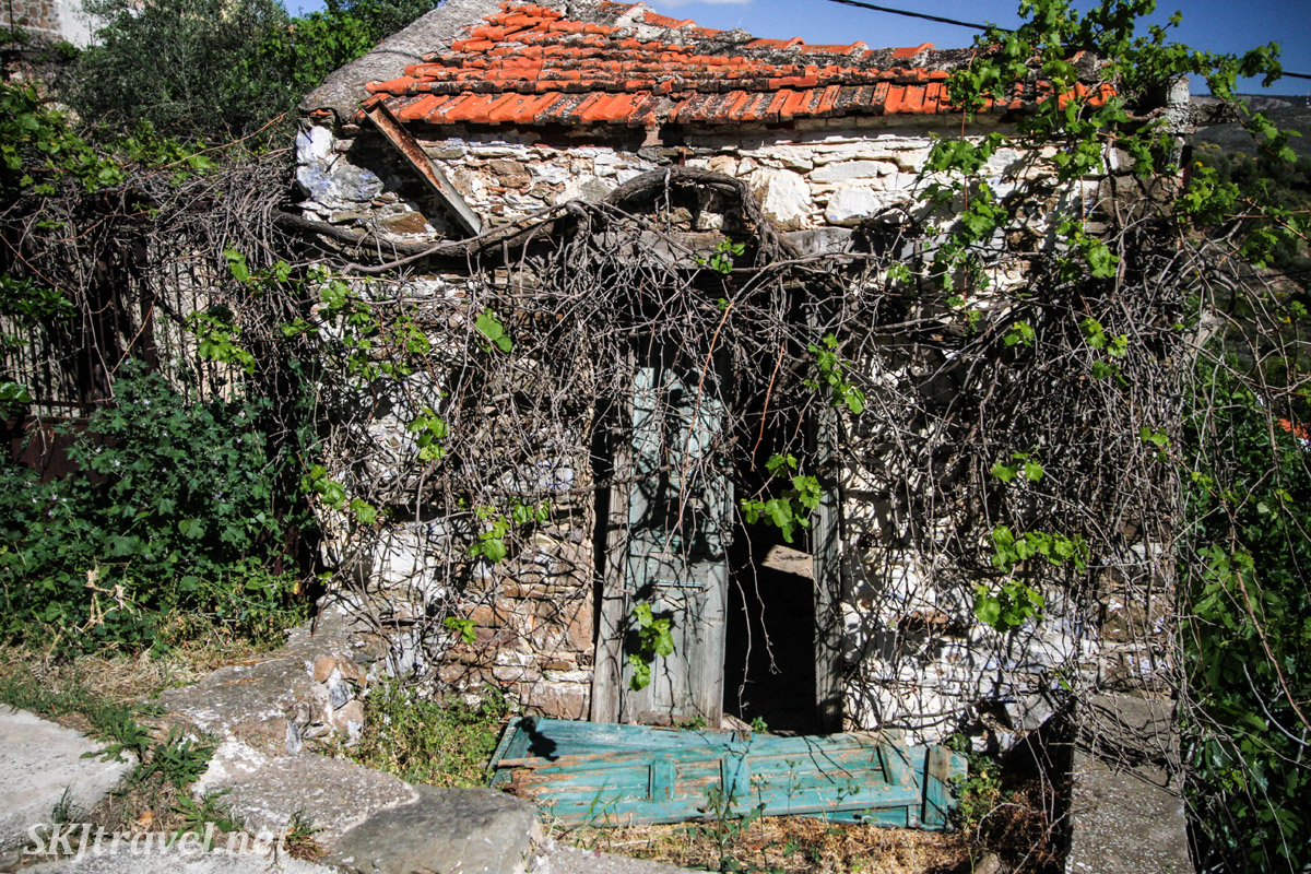 Old stone building with red tile roof taken over by large vines. Volissos, Chios Island, Greece.