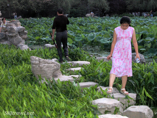 Stone path through a pretty swamp in Xian, China.